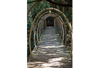 Bridge At Birds Of Eden